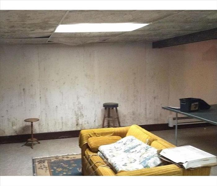 Basement with sofa pingpong table and white walls with mold damage