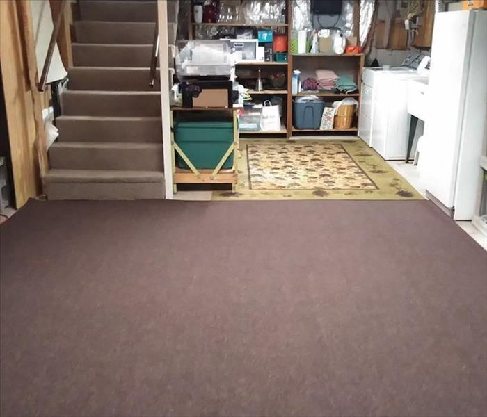 Basement laundry room with stairs and a purple carpet